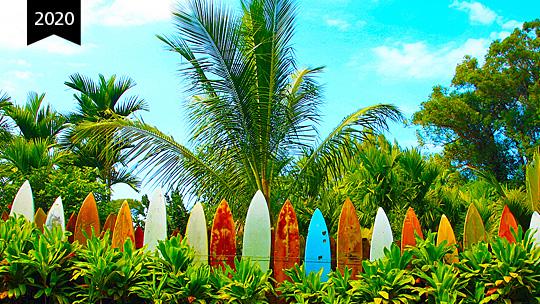 Hawaii_2020